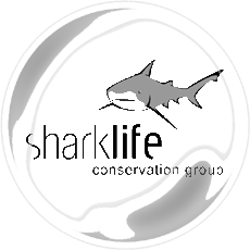 sharklife_logo